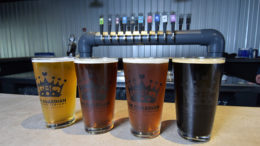 Four of Guardian Brewing Company's most popular beers are pictured. The brewery expects to open September 30th. Photo by: Mike Rhodes