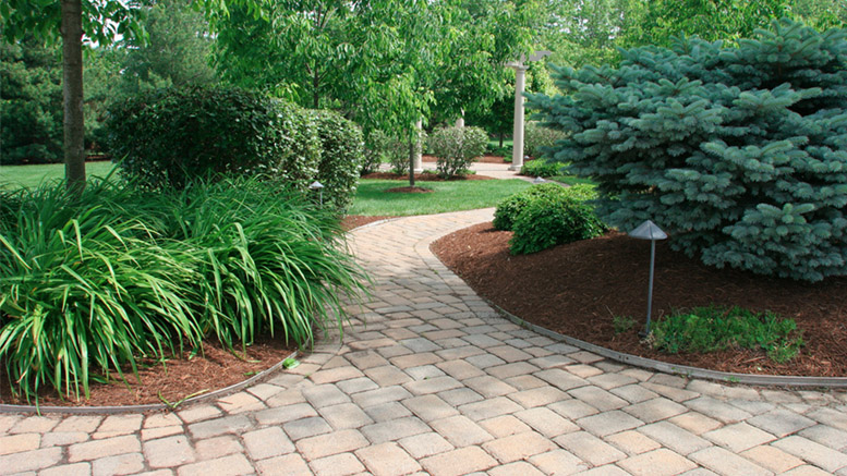 For over 33 years, Clean Cut Lawn and Landscape has provided annual maintenance programs and full-service design and installation of landscapes and hardscapes to local residents and commercial companies.