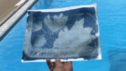 Cyanotype Photograph, made with photoreactive paper, water, and sunlight. Learn this process during the Pool Project at Tuhey Pool and Catalina Swim Club. Photo provided.